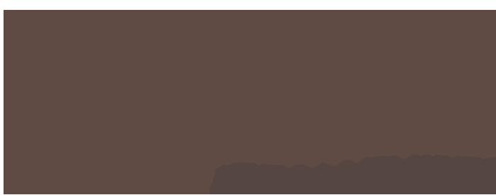 Vive la Memories - Fotoblokken